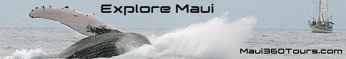 Maui360Tours.com  Banner