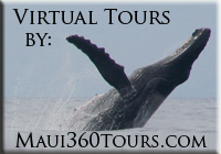 Maui virtual tour logo for BeTherePix.com